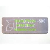 AM91L22-45DC